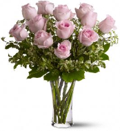 Perfect Pink Roses