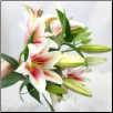 An Oriental Lily Bouquet